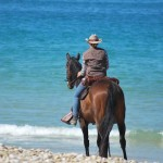 balade à cheval proche de la mer