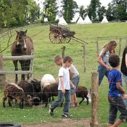 Soins des animaux de la ferme