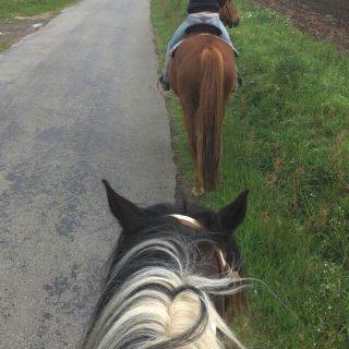 balade-a-cheval_ranch-de-calamity-jane-morbihan